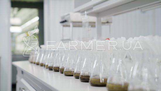 Лабораторний аналіз якості грунтів
