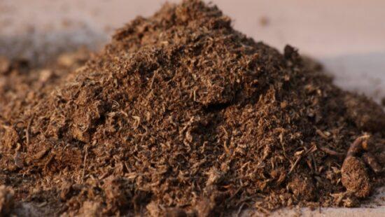компост в качестве органического удобрения